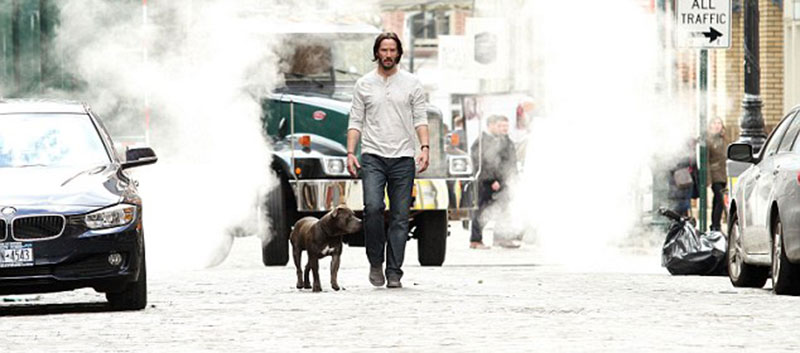 KEANU REEVES TAKES PIT BULL FOR A WALK